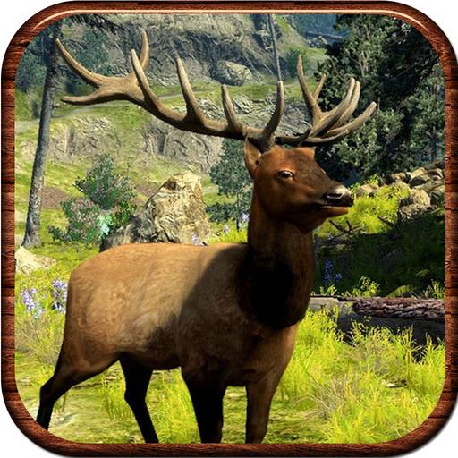 Colorado Shooting 2017: 2017 WhiteTail Deer Hunt-ing Elite Shooting 3D
