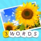 3 Words: Summer