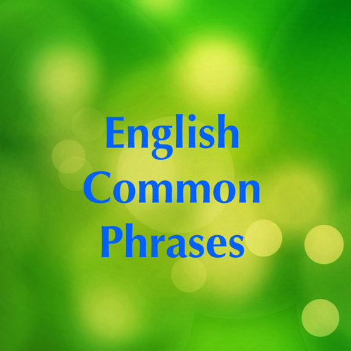 Most common phrases In essay