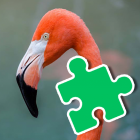 Flamingo Jigsaw Puzzles For Kids Educational