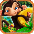 Jungle adventure - Monkey Island