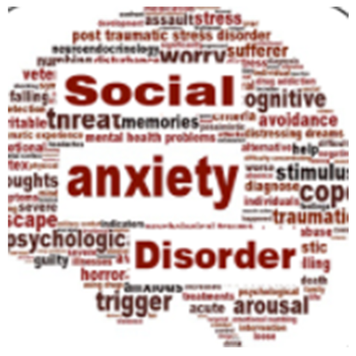 wiki social anxiety disorder